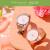 【香迪奥口紅を贈る】PRECISNA/佩西納運命の輪菅糸姿同型腕時計31 mm満天星砕石ベルトクウォー女子時計きらきら光る心PA 3101
